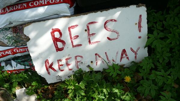 Beeskeepaway